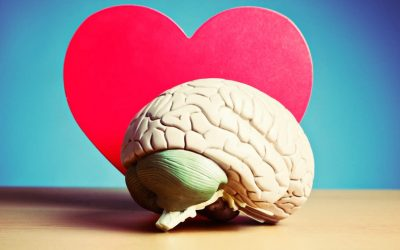How Things related to mind are also related to heart?