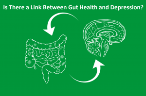 Link between Gut Health and Depression