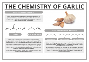 Garlic benefits for stuff and runny nose