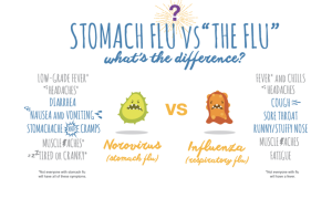 stomach flu and flu difference for health