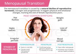 Menopausal Transition