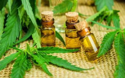 15 Great Ways to Use CBD Oil to Stop Migraine Attacks