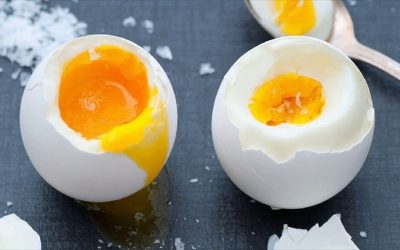 Dietary cholesterol or egg consumption do not increase the risk of stroke